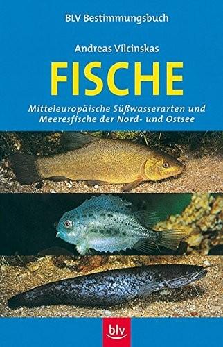 Andreas Vilcinskas: Fische. Mitteleuropäische Süßwasserarten und Meeresfische der Nord- und Ostsee