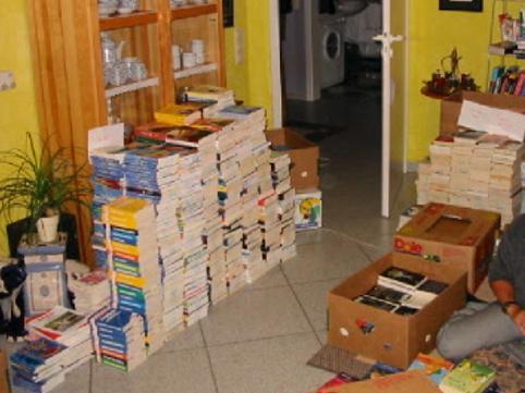 Bücher sortieren im Wohnzimmer